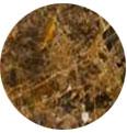 échantillon marbre marron foncé